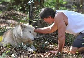 Man Petting Wolve